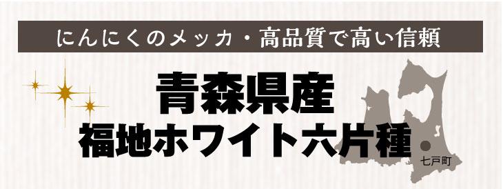 青森県産 福地ホワイト六片種
